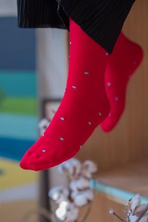 Skarpetki czerwone w błękitne kropki - KABAK