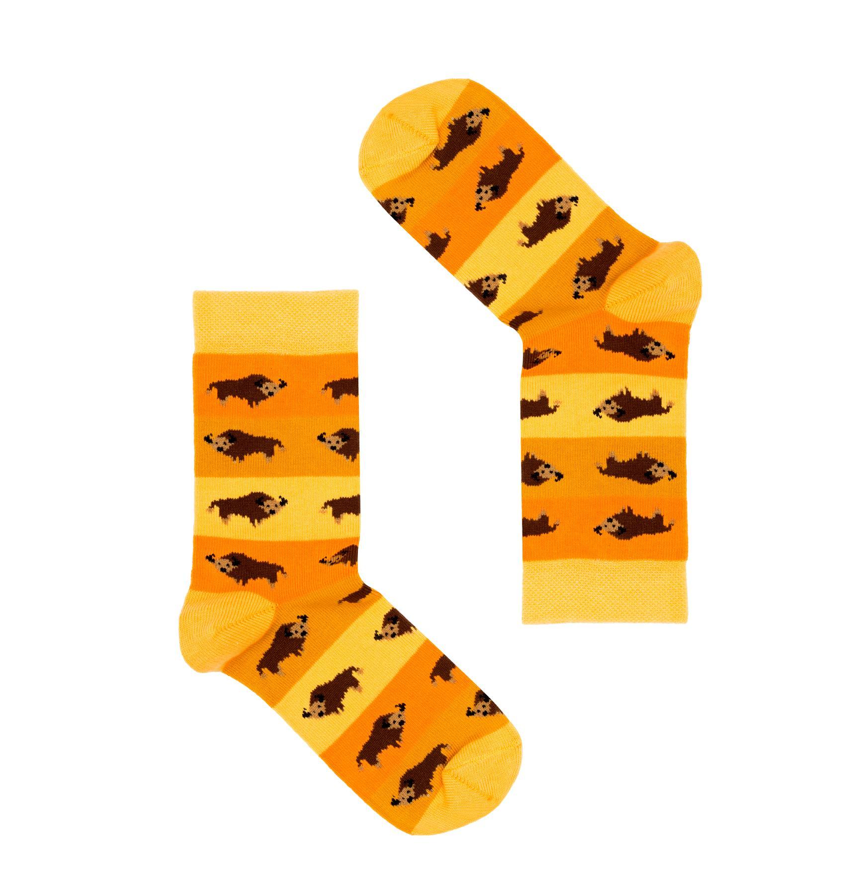 Śmieszne, kolorowe skarpetki dziecięce FAVES Socks & Friends z kolekcji polskiej w żubry! Poznaj kolorowe skarpety marki Faves Socks & Friends i dodaj swoim stylizacjom odrobinę szaleństwa, a podróżnicze motywy niech inspirują Cię do wypraw małych i dużych. Wzory skarpet przedstawiają symbole charakterystyczne dla danego kraju. Znajdziesz u nas także więcej motywów z tej kolekcji w innych rozmiarach - może to idealny pomysł na skarpety dla całej rodziny? Made in Poland. – produkty są zarówno projektowane jak i produkowane wyłącznie w Polsce. Bawełna stosowana w skarpetach posiada certyfikat OEKO TEX, który stanowi gwarancję bezpieczeństwa dla skóry. Skład skarpet: 80% bawełny czesanej / 15% poliamidu / 5% elastanu