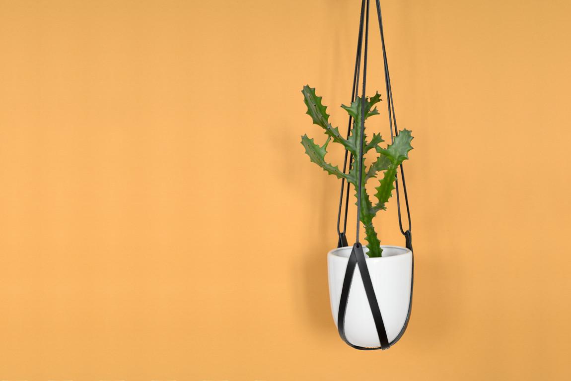 Skórzany kwietnik wiszący Lade to oryginalna dekoracja pozwalająca na nietypowe wyeksponowanie roślin Pasuje do różnych rozmiarów i kształtów donic | Wariant 1 wykonany jest ze skóry barwionej na kolor czarny Materiały: skóra bydlęca garbowana roślinnie nity i kółko metalowe w kolorze złotym Wymiary: długość min 80 cm Uwaga: kwietnik sprzedawany bez doniczki i kwiatka Skóra licowa to szlachetny materiał Aby pięknie się starzał należy dbać o niego korzystając z preparatów do pielęgnacji skóry licowej