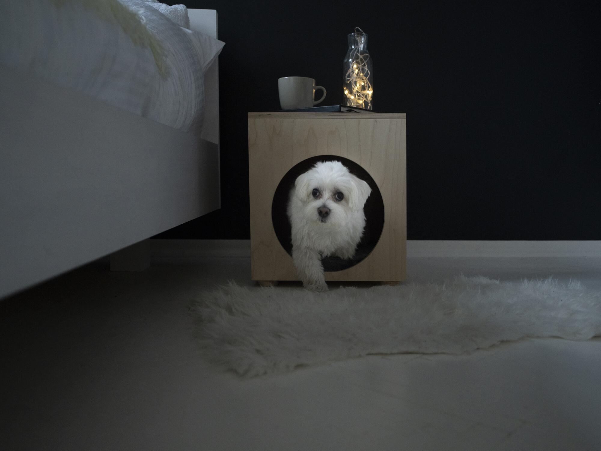 Domek dla kota/psa Dreamy Pet - Dreamy Noses Pamela Adamik   JestemSlow.pl